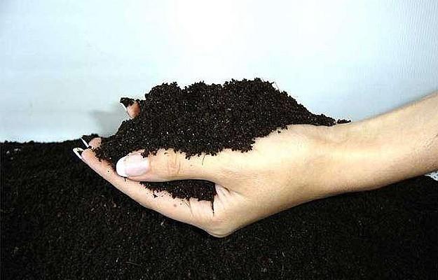 Чернозем – природный грунт с минералами